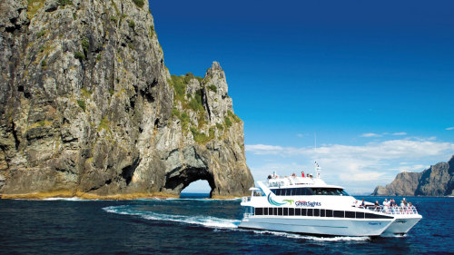 Bay of Islands Day Tour with Cruise by Gray Line