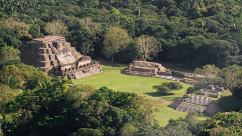 Altun Ha Maya Site and Belize Zoo Combo Tour