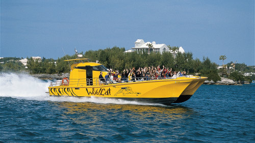 WildCat Powerboat Adventure