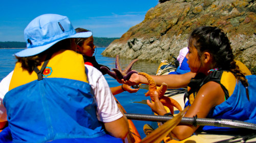 2-Day James Island Sea Kayaking & Camping Adventure