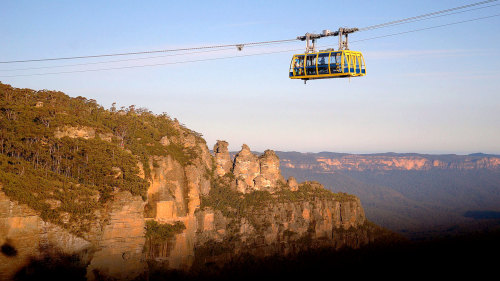 Blue Mountains & Wildlife Day Tour