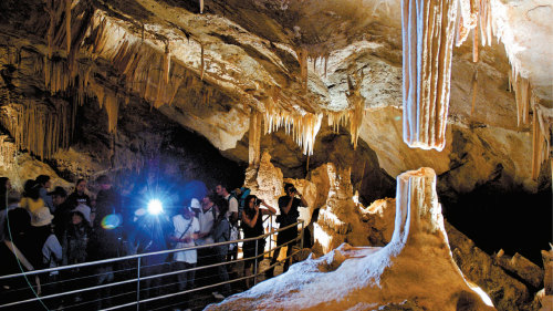 Blue Mountains & Jenolan Caves Day Tour by AAT Kings