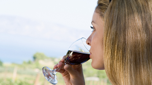 South End Wine Tour with Food & Drink Tastings by City Wine Tours