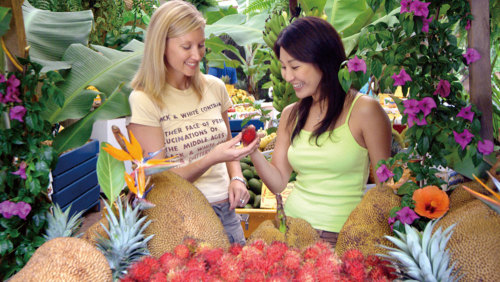 Byron Bay & Tropical Fruit World Day Tour by Australian Day Tours