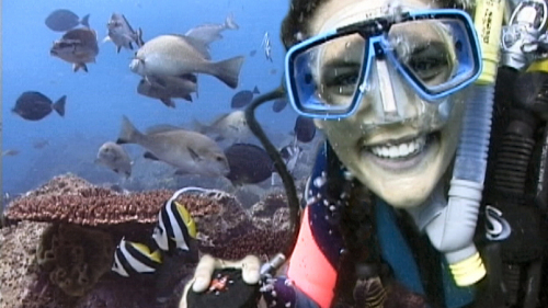 Introductory Scuba Diving Tour by Byron Bay Dive Center