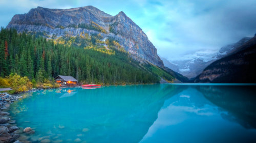 Guided Lake Louise Tour & Lunch