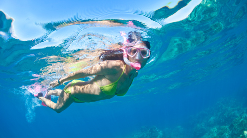 Mexican Snorkel Adventure & Eco-Tour