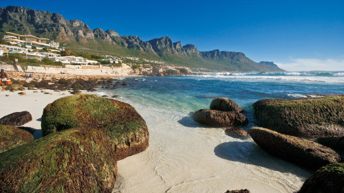 4-Day Cape Highlights Tour