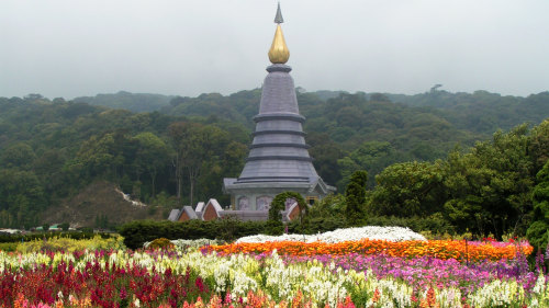 Doi Inthanon National Park Tour with Jungle Trekking