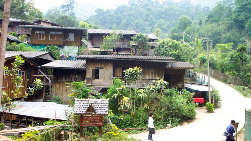 Mae Kham Pong Village Full-Day Tour with Lunch & Dinner