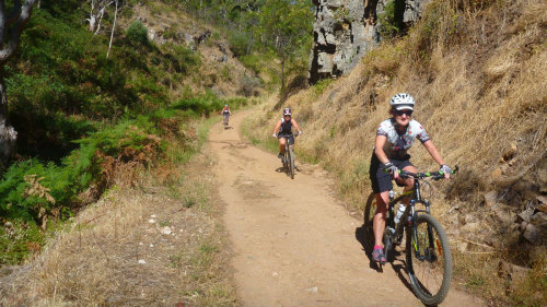 Bicycle Tour of Mount Lofty