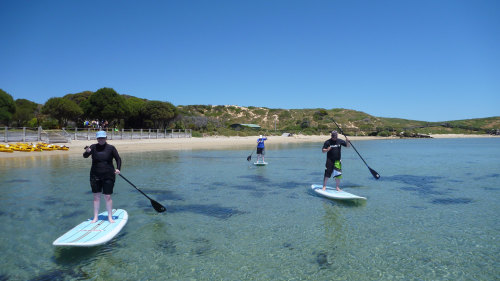 Stand-Up Paddleboarding Lesson