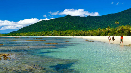 Daintree, Cape Tribulation & Mossman Gorge Small-Group Tour