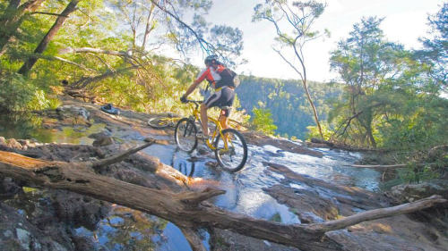 Rainforest Adventure Bike Tour by Mountain Bike Tours
