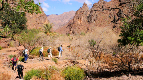 Half-Day Trekking Tour in the Atlas Foothills