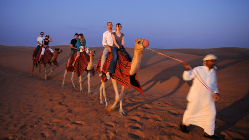 Sunset Desert Safari & Half-Day City Tour—Combo Saver by Alpha Tours