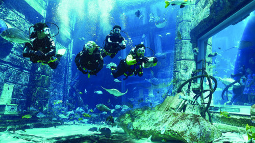 Scuba Diving in Ambassador Lagoon at Atlantis, The Palm