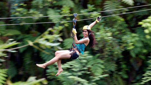 Rainforest Zipline Adventure