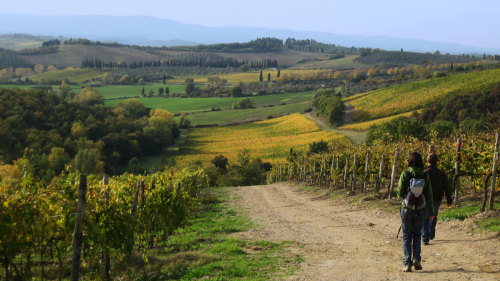 Small-Group Guided Hike to Monteriggioni