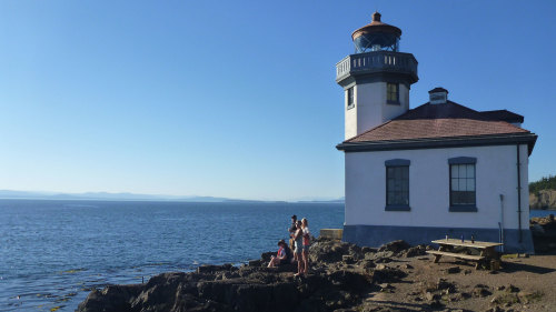San Juan Island: Full-Day Private Quest for Orcas, Pigs & Wine