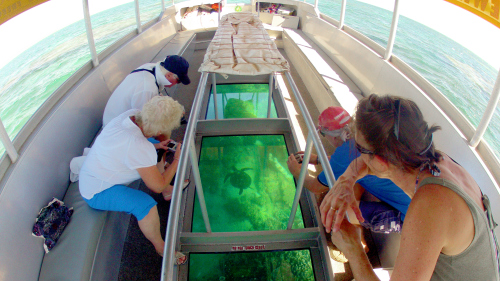 Glass-Bottom Boat Cruise by Ningaloo Ecology Cruises