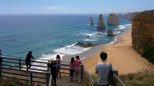 2 Tours Combo: Great Ocean Road & Phillip Island Penguin Parade