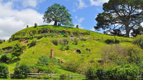 Harley Davidson Chauffeured Tour to Hobbiton Village