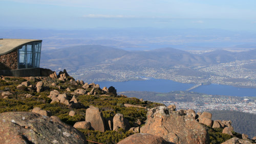 Mt Wellington Half-Day Tour