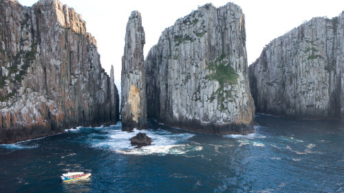 Tasman Peninsula Full-Day Tour & Cruise with Lunch