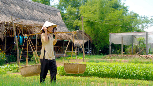Flavors of Vietnam: Hoi An Market & Tra Que Village Cooking Class