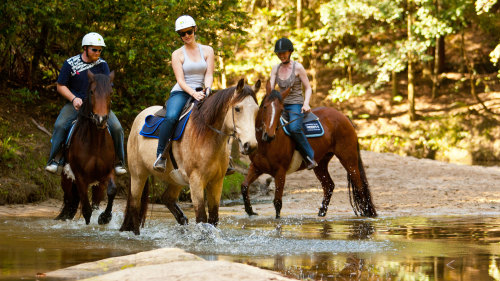 Horse Riding Tour at Glenworth Valley