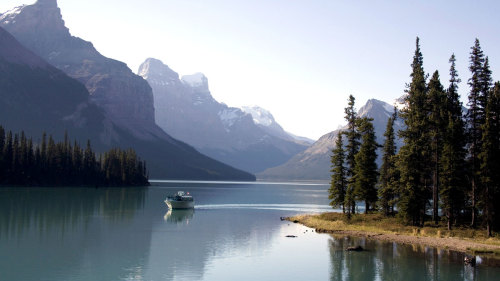 Maligne Valley Sightseeing & Spirit Island Boat Tour