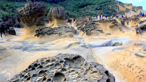 Yehliu Geopark & Northern Seacoast Tour by My Taiwan Tour