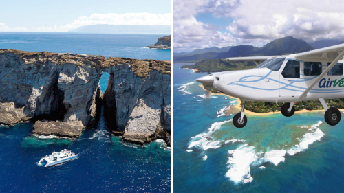 Combo Saver: Niihau Snorkel & Kauai Circle Island Flight