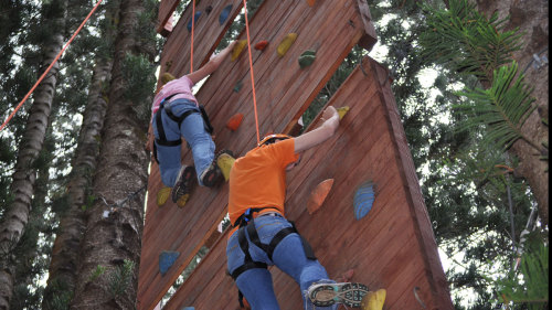 Zipline Eco-Adventure with Swing & Rock Wall Climb