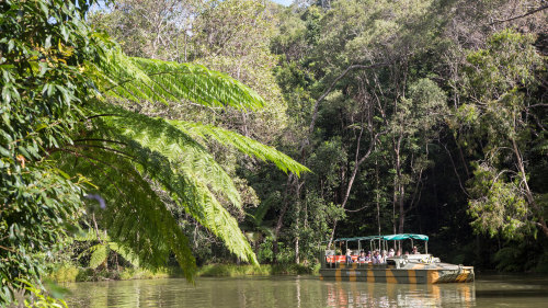 Rainforestation Nature Park, Butterfly Sanctuary & Kuranda Village