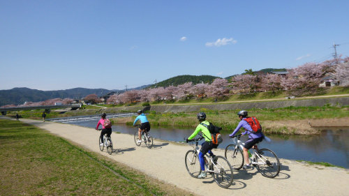 Small-Group Kyoto Cycling Tour by Urban Adventures