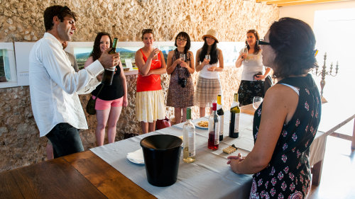 Arrábida Wine Small-Group Full-Day Tour