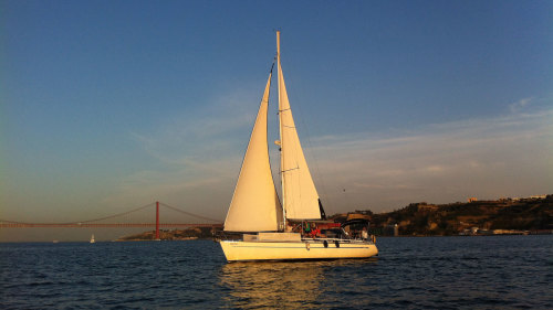 Small-Group Sunset Sailing Cruise by Marlin Boat Tours