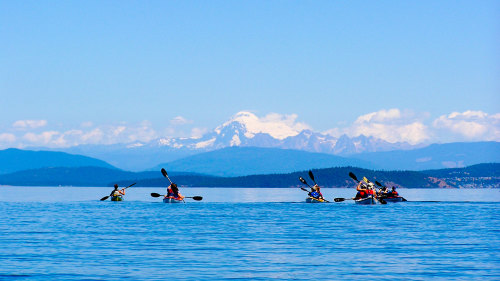 Kayaking Adventure along Lopez Island