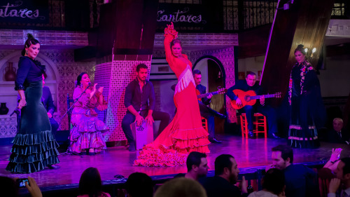 Panoramic Sightseeing & Flamenco Dance Show