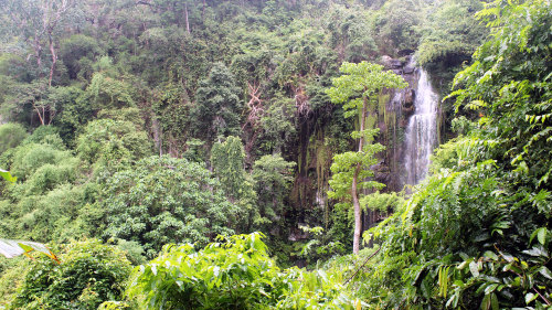 Private Kirirom National Park Tour by Threeland Travel