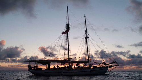 Tall Ship Sunset Cruise by Providence Sailing