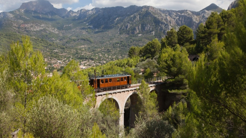 Mallorca Island Full-Day Tour