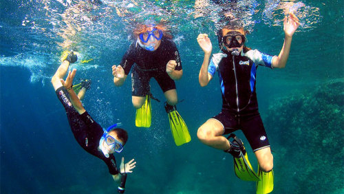 Snorkeling Tour by Trip4Real