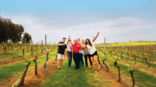 4-Day Food & Wine Discovery Tour by AAT Kings