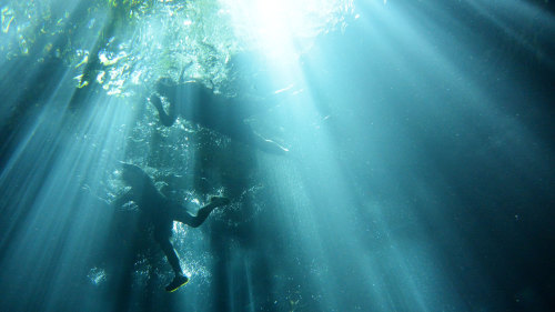 Small-Group Subterranean Snorkel Adventure Tour by Urban Adventures