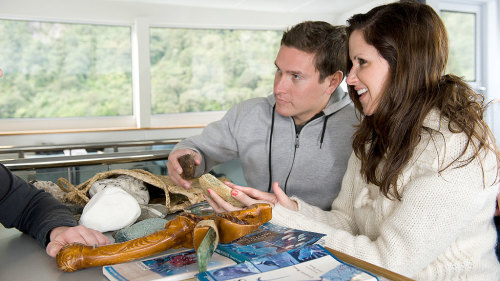 Milford Sound Encounter Nature Cruise by Southern Discoveries