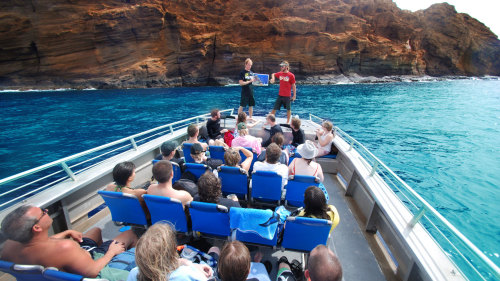 Molokini Wild Side Eco-Adventure