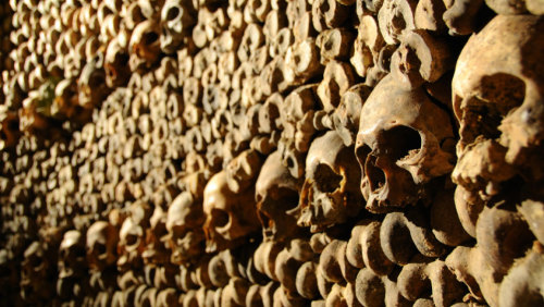 Skip-the-Line: The Catacombs of Paris Tour